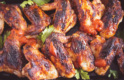 Spicy chicken wings closeup Stock Images