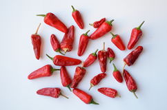 Spicy chili peppers. Stock Photo