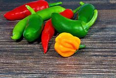 Spicy chili peppers on wooden board. Bunch of fresh chilli chilli peppers piled up together. The vegetable belongs botanically to the Genus Capsicum, being Royalty Free Stock Images