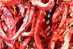 Spicy chilli pepper blurred background Stock Photos