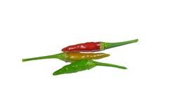 Spicy chilli Stock Photos
