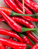 Spicy Chillies Means Red Pepper And Capsaicin Royalty Free Stock Photography