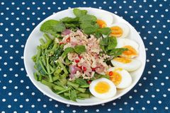 Spicy Chinese morning glory salad with boiled egg topped pork ch Stock Image