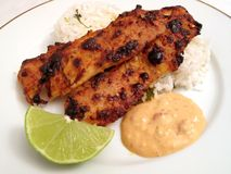 Spicy Chipotle Broiled Fillets. Photo of fish fillets broiled using a Chipotle Mayonnaise sauce coating. Cilantro rice, sauce and a lime are served with the stock photo