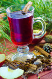 Spicy Christmas drink Stock Images