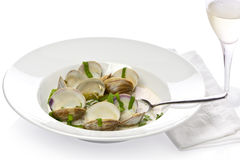 Spicy Clam Soup Stock Photo