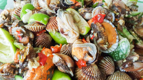 Spicy cockle salad, yum hoi krang Royalty Free Stock Images