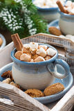 Spicy cocoa with marshmallows, cinnamon and cookies Royalty Free Stock Photo