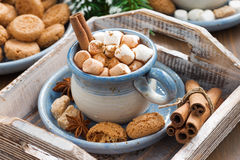 Spicy cocoa with marshmallows  and cookies on a wooden tray Stock Images
