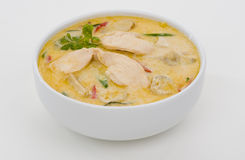 Spicy coconut cream soup Stock Photography