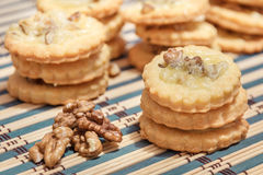 Spicy cookies with walnuts and cheese Royalty Free Stock Images