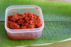 Spicy curry paste. Royalty Free Stock Image
