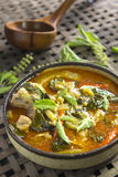 Spicy curry Royalty Free Stock Photo