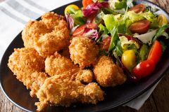 Spicy deep-fried chicken wings in breadcrumbs and fresh vegetabl Royalty Free Stock Images