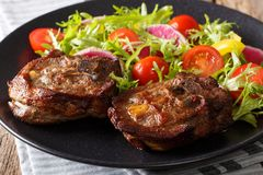 Spicy delicious lamb steak and salad from radish, tomatoes, pepp. Spicy delicious lamb steak and vegetable salad from radish, tomatoes, pepper and lettuce close Royalty Free Stock Image