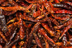 Spicy dry ingredient. Chili spicy dried fry for ingredient Royalty Free Stock Images