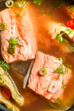 Spicy fish soup based on salmon. Closeup of spicy fish soup based on salmon Royalty Free Stock Image