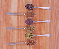 Spicy Flavours. Six different whole spice seeds in silver spoons on a wooden background Royalty Free Stock Photos