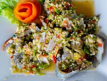 Spicy fresh crab salad on white dish, seafood royalty free stock photography