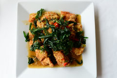 Spicy fried chicken with basil leaves Royalty Free Stock Photography