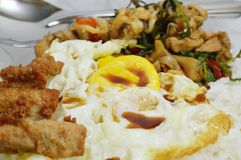 Spicy fried chicken and squid with basil leaves on rice topping fried egg Royalty Free Stock Photography