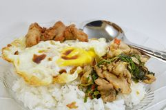 Spicy fried chicken and squid with basil leaves on rice topping fried egg Stock Photo