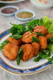 Spicy fried fish ball Royalty Free Stock Image