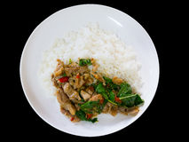 Spicy fried pork with basil leaves served with jasmin rice. Spic. Y oriental food on black background Stock Images