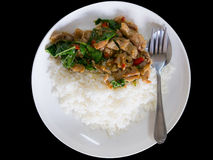 Spicy fried pork with basil leaves served with jasmin rice. Spic. Y oriental food placed on black background Royalty Free Stock Image