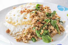 Spicy fried pork with basil Royalty Free Stock Image