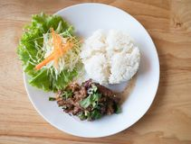 Spicy fried pork rice on the table wood (Larb Moo tod royalty free stock photography
