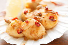Spicy fried scallops in a shell - shallow DOF Stock Images