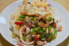 Spicy fried squid with basil leaves topping fried egg Royalty Free Stock Image