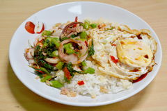 Spicy fried squid with basil leaves topping fried egg Stock Images