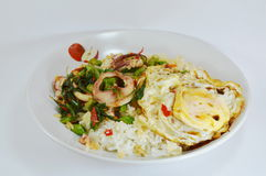 Spicy fried squid with basil leaves topping fried egg Royalty Free Stock Photos