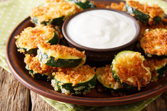 Spicy fried zucchini in breadcrumbs Panko and sour cream close-u Stock Images