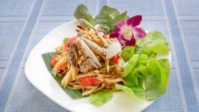 Spicy green papaya salad. Traditional thai cuisine spicy green papaya salad with crab stock photo