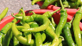 Spicy Green Peppers 1 stock video