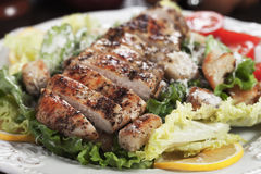 Spicy grilled chicken with caesar salad. Spice grilled chicken breas served over caesar salad Royalty Free Stock Photos