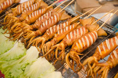 Spicy grilled squid. On Thailand street Stock Image