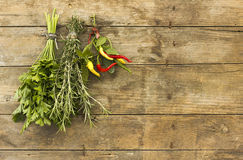 Spicy herbs Royalty Free Stock Image