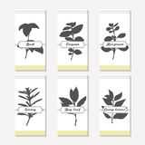 Spicy herbs silhouettes collection. Hand drawn basil, oregano, thyme, majorana, savory, bay leaf, curry Royalty Free Stock Photos