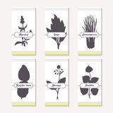 Spicy herbs silhouettes collection. Hand drawn hyssop, sage, lemongrass, kaffir lime, borage, perilla Royalty Free Stock Images