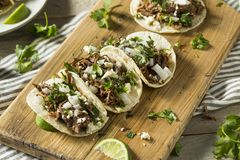 Spicy Homemade Beef Barbacoa Tacos. With Cilantro Cheese and Onion Stock Images