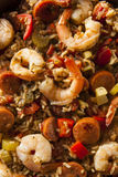 Spicy Homemade Cajun Jambalaya royalty free stock images