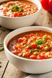 Spicy Homemade Gazpacho Soup Royalty Free Stock Images
