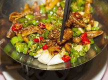 Spicy Hot Chinese Food Stock Photography