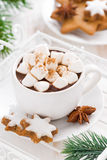 Spicy hot chocolate with marshmallows in a cup, vertical Stock Photography