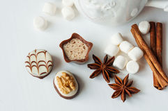Spicy hot cocoa with marshmallows Royalty Free Stock Photos