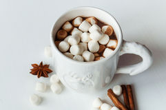 Spicy hot cocoa with marshmallows Royalty Free Stock Photo